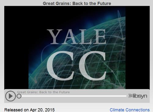 Grains-future