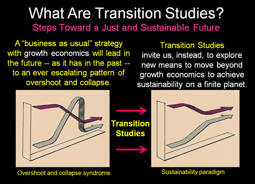 transition-studies