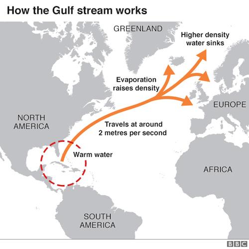 Gulf-Stream