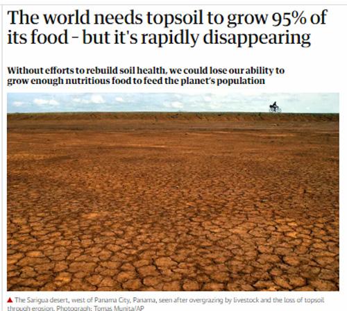 Guardian-topsoil.jpg