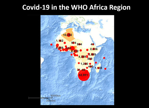 Covid-19-Africa-map