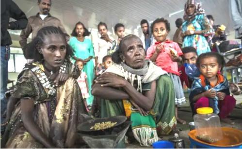 Tigray-famine